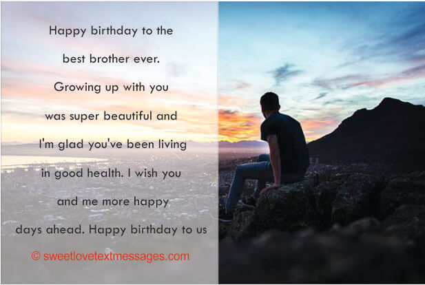 Birthday Wishes to My Twin Brother