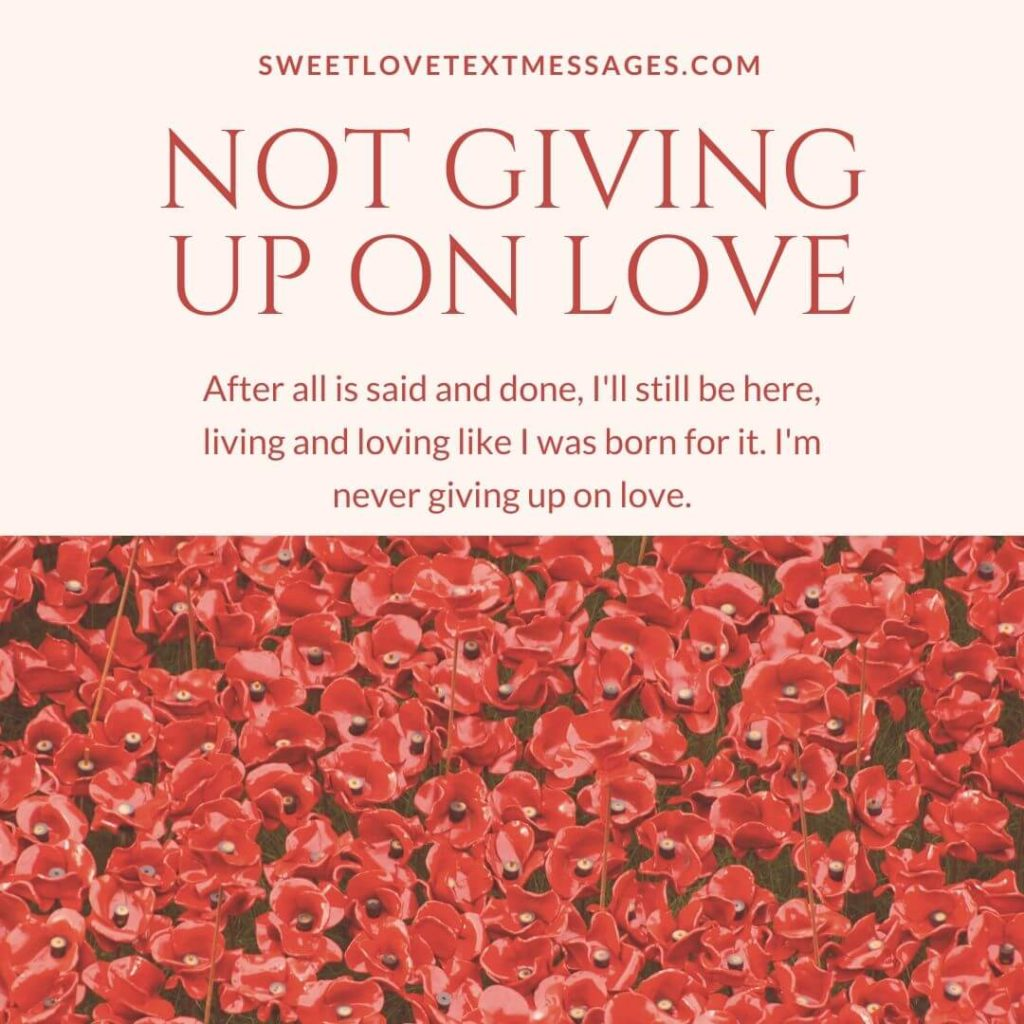 giving up on love images