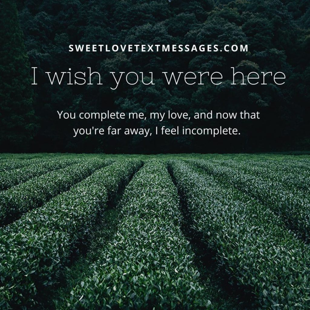 funny i wish you were here images